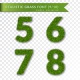 L'herbe numéro 5 6 7 8 Le vert numéro cinq, six, sept, huit d'isolement sur le fond transparent blanc Herbe verte 3d Image libre de droits