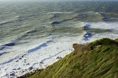 L'herbe sur la côte Photo libre de droits