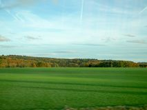L'herbe verte dans le domaine images libres de droits