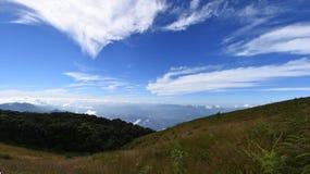 L'herbe verte de montagnes d'hiver et le ciel bleu aménagent en parc Photographie stock libre de droits