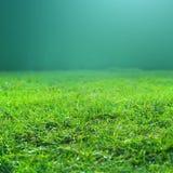 L'herbe verte de ressort frais sur le fond vert peut employer comme texture Image libre de droits
