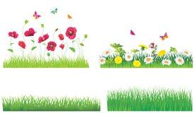 L'herbe verte et les fleurs. Photographie stock