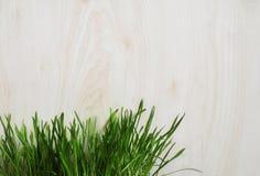 L'herbe verte se développe près des planches en bois. Photo stock