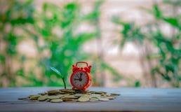 L'heure exacte et avec l'élevage d'argent photo stock