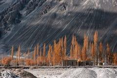 L'Himalaya delle montagne Ladakh, il Jammu e Kashmir, India Fotografia Stock