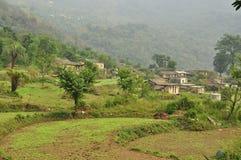 L'Himalaya indien : village et prés de montagne Image stock