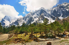 L'Himalaya nel Sikkim Fotografia Stock