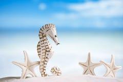 L'hippocampe avec les étoiles de mer blanches sur le sable blanc échouent, océan, ciel Photo stock