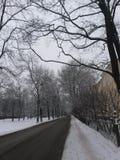 L'hiver à St Petersburg Images libres de droits