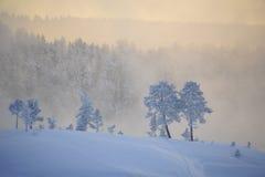L'hiver émotif Photographie stock
