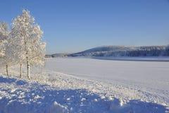 L'hiver émotif Image stock