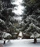 L'hiver Photographie stock libre de droits