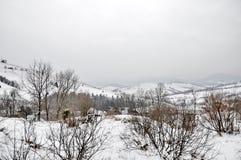L'hiver Photo libre de droits