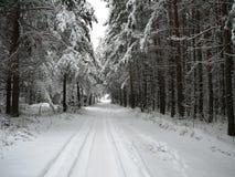 L'hiver Photos stock