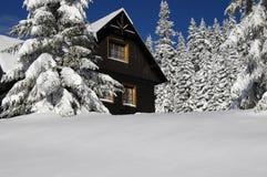 L'hiver Image libre de droits