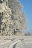 L'hiver Images libres de droits