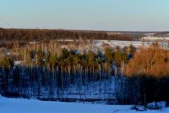 L'hiver Photo stock