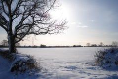 L'hiver anglais Images libres de droits