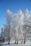 L'hiver au Danemark Images libres de droits