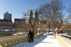 L'hiver au stationnement d'hôtel de ville dans NYC Photos stock