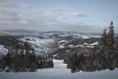 L'hiver aux montagnes photos libres de droits