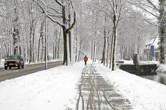 L'hiver aux Pays Bas Photo stock