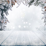 L'hiver background Photographie stock libre de droits
