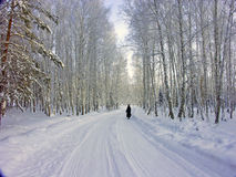 L'hiver Backroad image stock