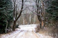 L'hiver Backroad Photographie stock libre de droits