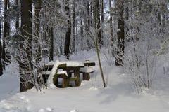 L'hiver beau Images libres de droits