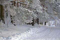 L'hiver beau Image stock