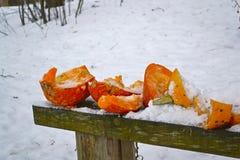 L'hiver beau Photo libre de droits