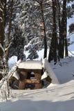 L'hiver beau Images stock