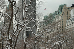 L'hiver blanc à Manhattan photographie stock libre de droits