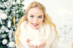 L'hiver blanc Images stock