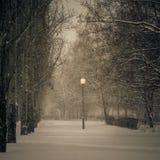 L'hiver Chutes de neige dans la ville Photos stock