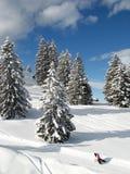 l'hiver d'alpes Photo stock