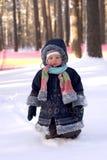 l'hiver d'amusement image libre de droits