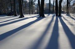 l'hiver d'arbres Images libres de droits