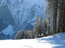 l'hiver d'horizontal Images stock