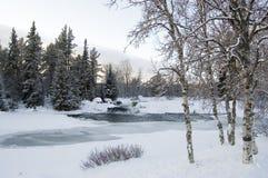 l'hiver d'horizontal Photo libre de droits