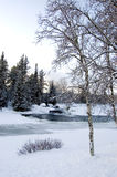 l'hiver d'horizontal Photographie stock libre de droits