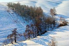 l'hiver d'horizontal images libres de droits