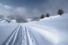 l'hiver d'horizontal Photos libres de droits
