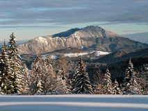 L'hiver dans Carpathiens Images libres de droits