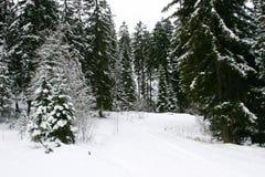 L'hiver dans Garmisch Images libres de droits