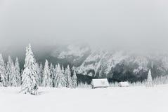 L'hiver dans Krkonose 3 Images libres de droits