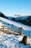 L'hiver dans la vallée de Newlands Photo libre de droits
