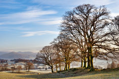 L'hiver dans le district anglais de lac Image libre de droits