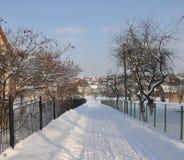 L'hiver dans le village. Photographie stock libre de droits